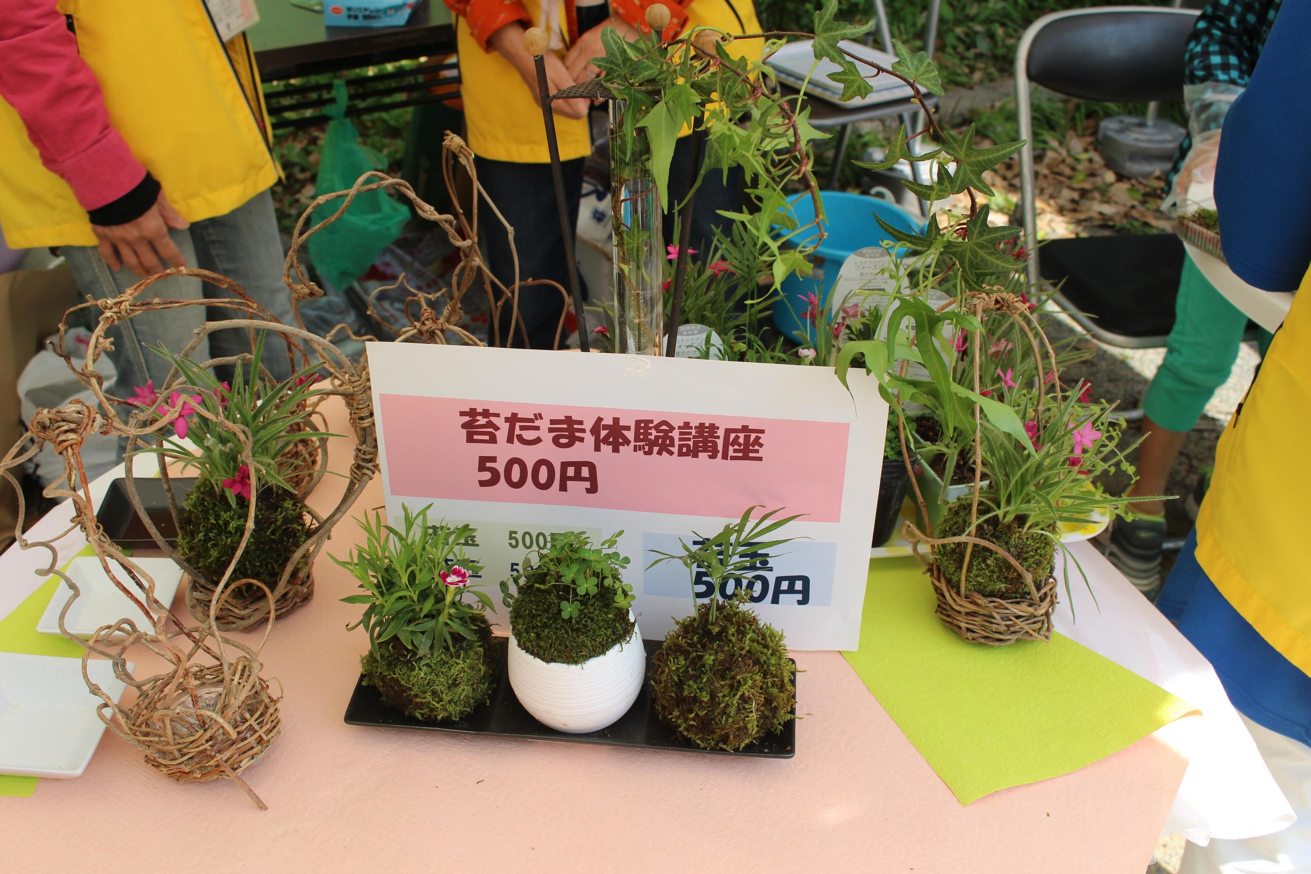 http://www.midorimachi.jp/blog/%E3%81%93%E3%81%91%E7%8E%8920170422%20%289%29.JPG
