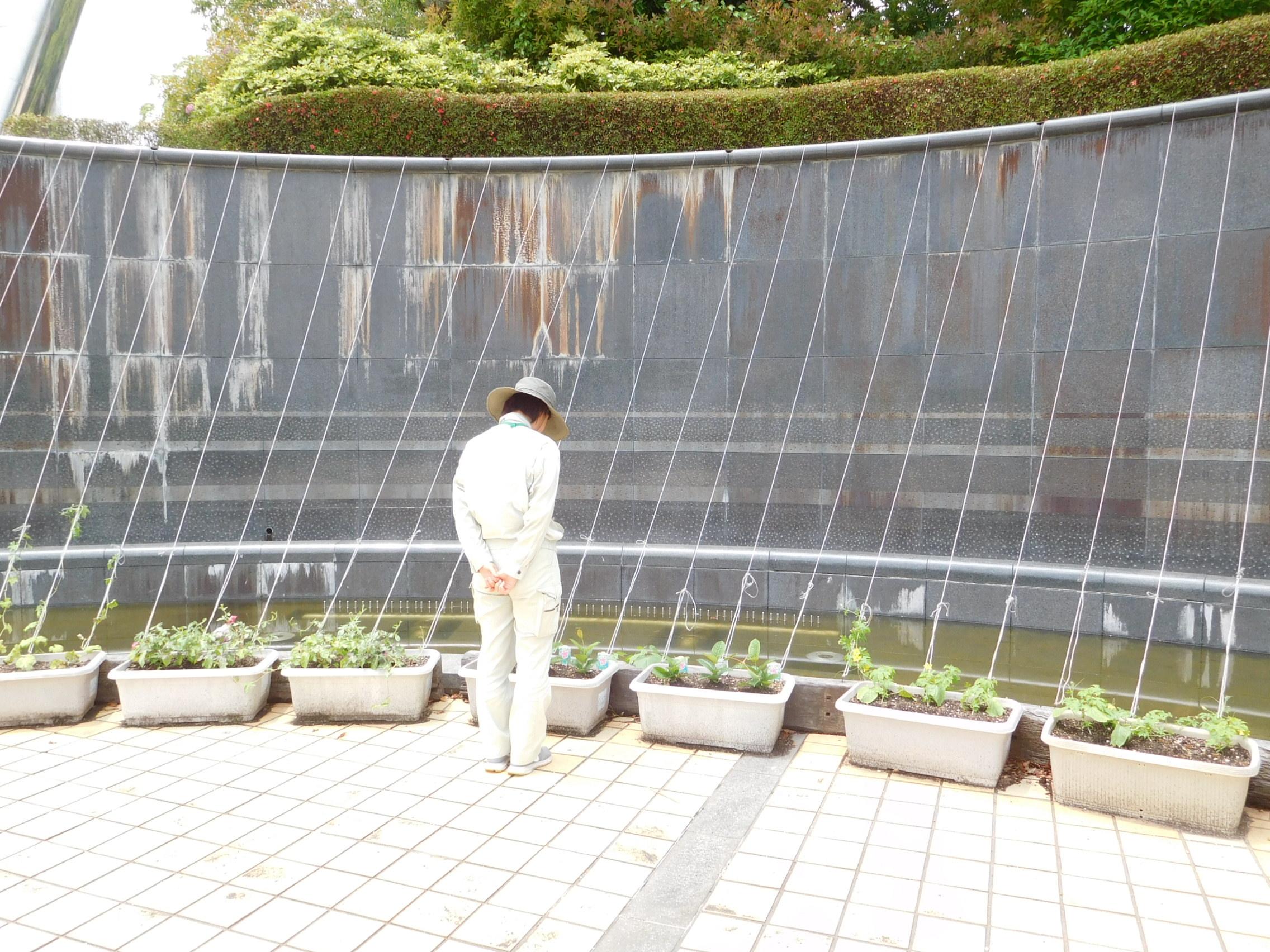 http://www.midorimachi.jp/blog/%E6%95%B5%E5%9C%B0%E8%A6%96%E5%AF%9F.JPG