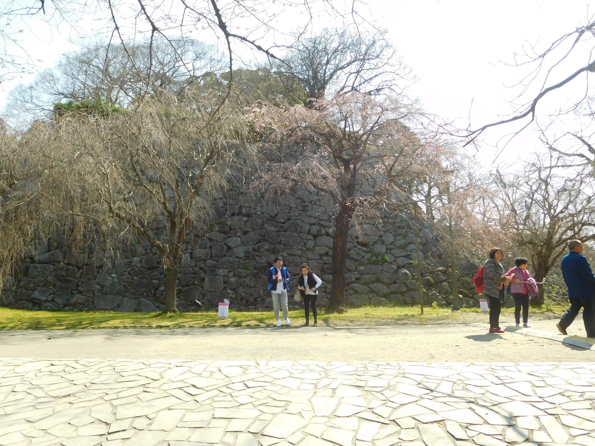 http://www.midorimachi.jp/blog/DSCN3707.JPG