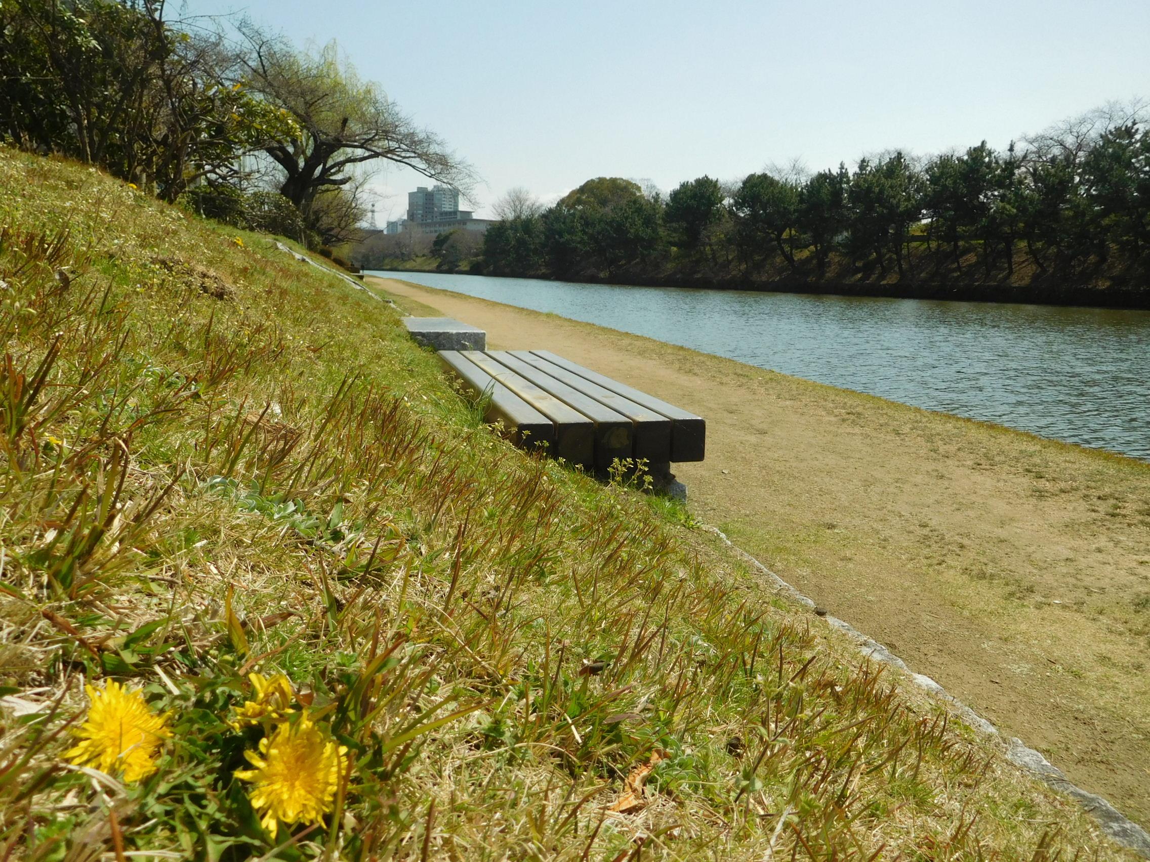 http://www.midorimachi.jp/blog/DSCN3728.JPG