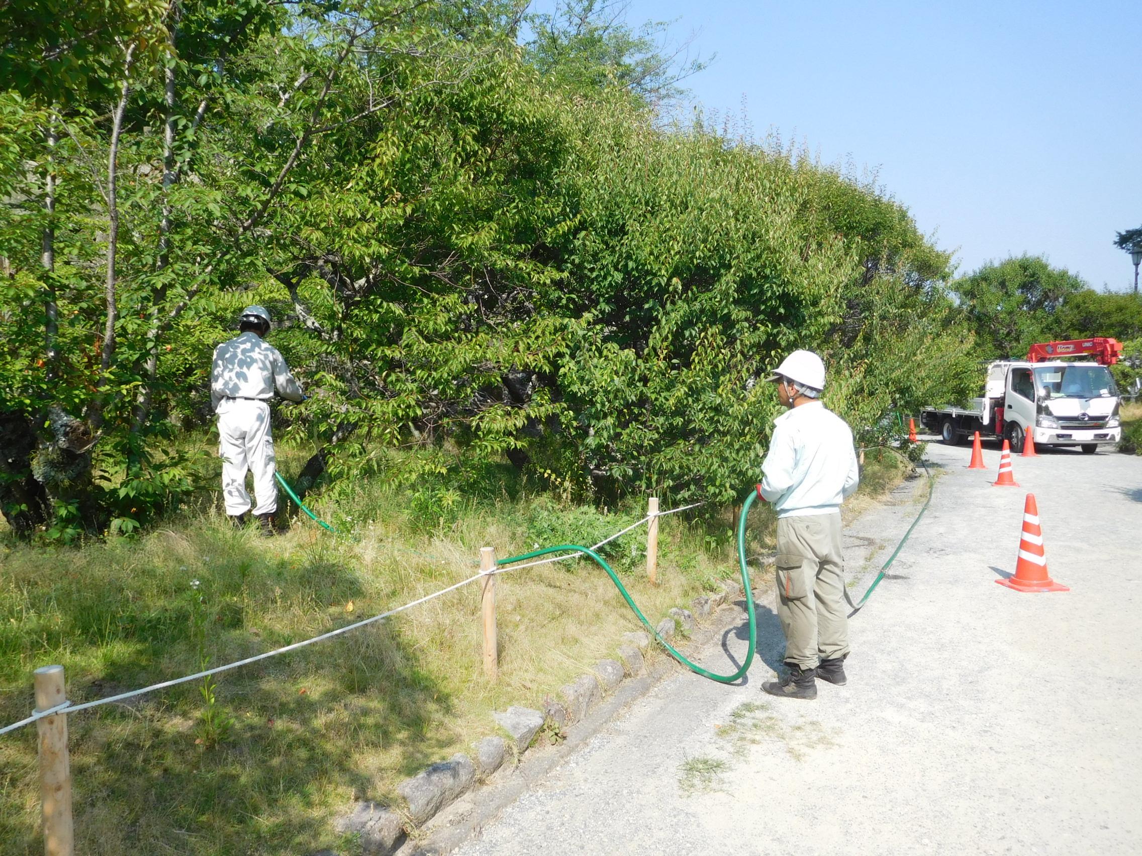 http://www.midorimachi.jp/blog/DSCN4685.JPG