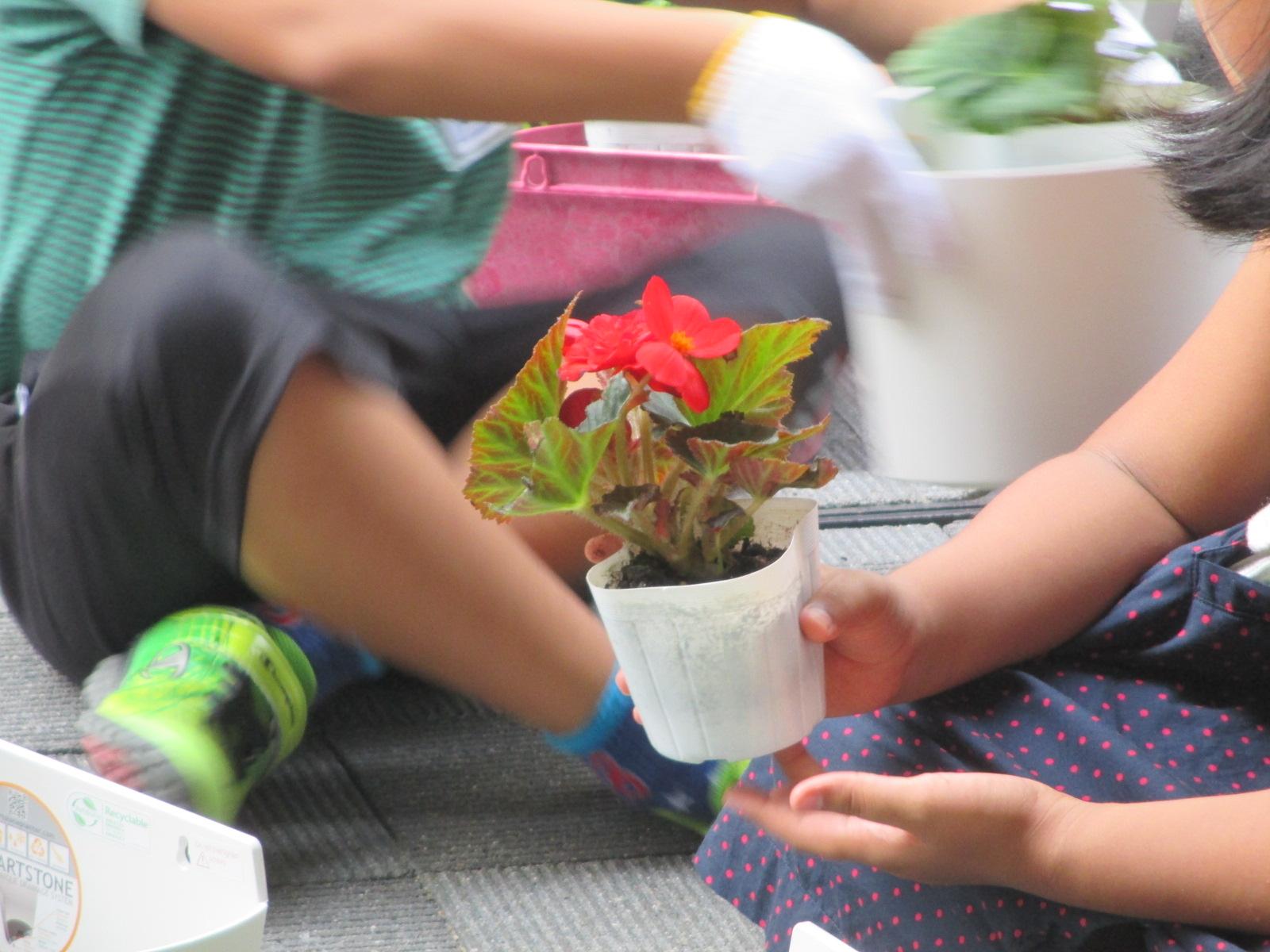 http://www.midorimachi.jp/blog/IMG_8241.JPG