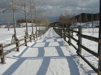 bokujo-yuhodo.jpg