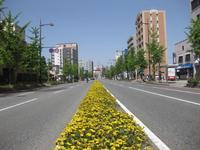 昭和通り.JPG