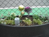 香椎P花壇.JPGのサムネール画像