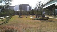 香椎浜西緑地広場