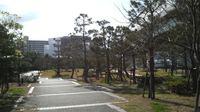 百道浜西緑地園路終点