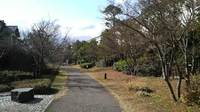 百道浜西緑地園路のサムネール画像