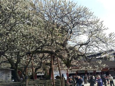 2012-03-11 14.04.24.jpg