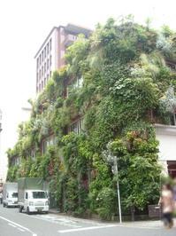 緑の家修正.jpg