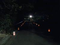 8.4動植物園灯明 043.jpg