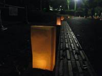 8.4動植物園灯明 045.jpg