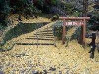 aburayama2128.jpg