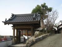 山門の右側が御会式桜.jpg