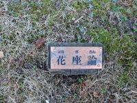 110210 梅園 花座論 蕾.JPG