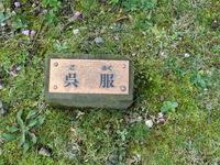 130221 梅園 満開 「呉服」.JPG