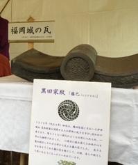 fukuokajyoukawara.jpg