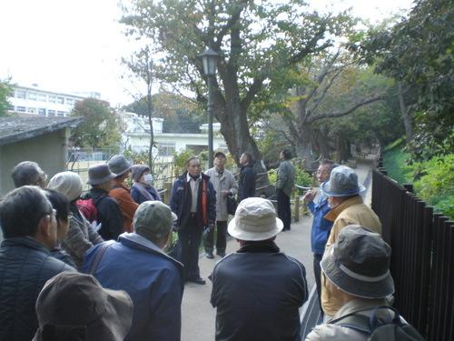 桜研修会4.JPGのサムネール画像