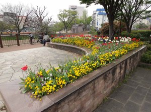 k22  清流公園3.jpg