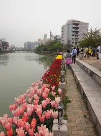 k25 清流公園6.jpg