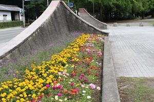 〇C花壇.jpg
