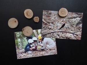 木のマグネット.jpg