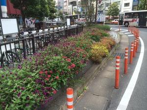 街路花壇2.jpg