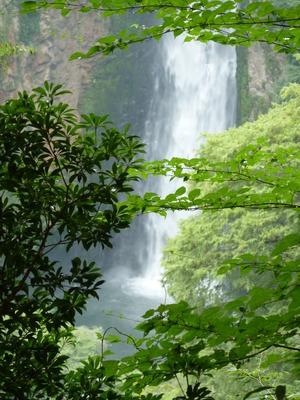 震動の滝壺.JPG