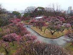 風景0222 (5).JPG