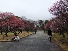 風景0222 (9).JPG