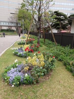 テラス花壇1.JPG