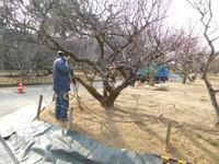 http://www.midorimachi.jp/blog/assets_c/2017/01/DSCN3331-thumb-200xauto-16559-thumb-500x375-16560.jpg