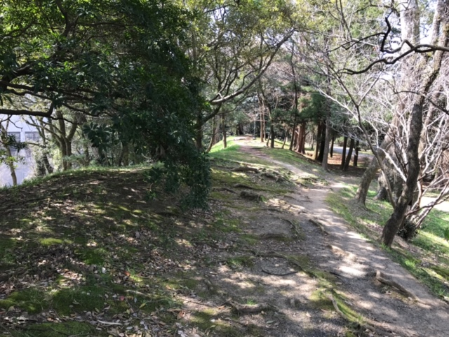 http://www.midorimachi.jp/blog/image2.JPG