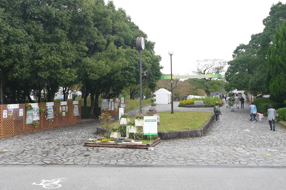 http://www.midorimachi.jp/blog/sP1110411.jpg