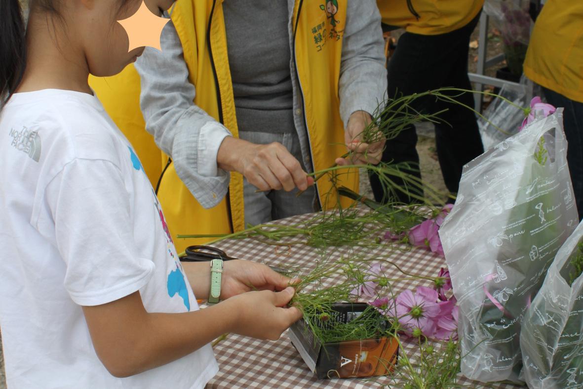 http://www.midorimachi.jp/blog/ssIMG_8431.jpg